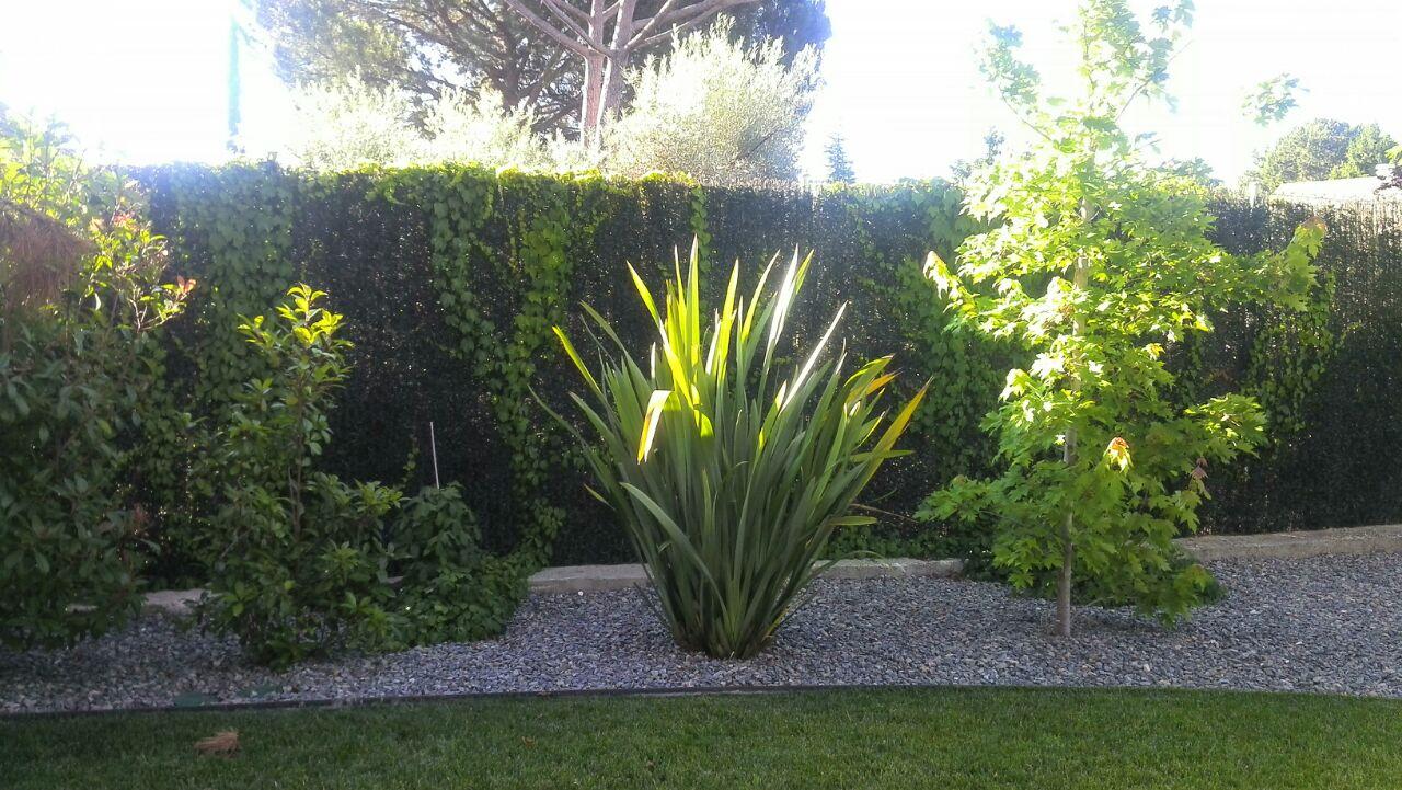 Servicio profesional de Jardinería en Madrid